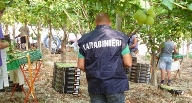 Carabinieri NIL - repertorio