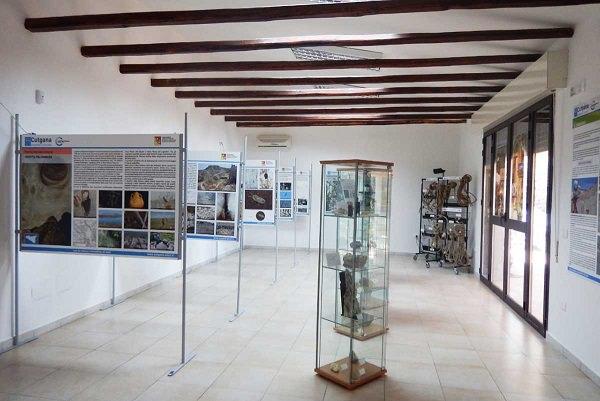 Sala espositiva (1)