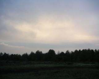 pineta etna