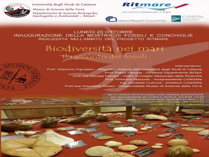 Inaugurazione_mostrapaleontologica_20_20_2014