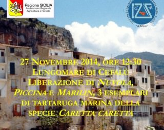 Locandina liberazione Cefalù 27.11.14