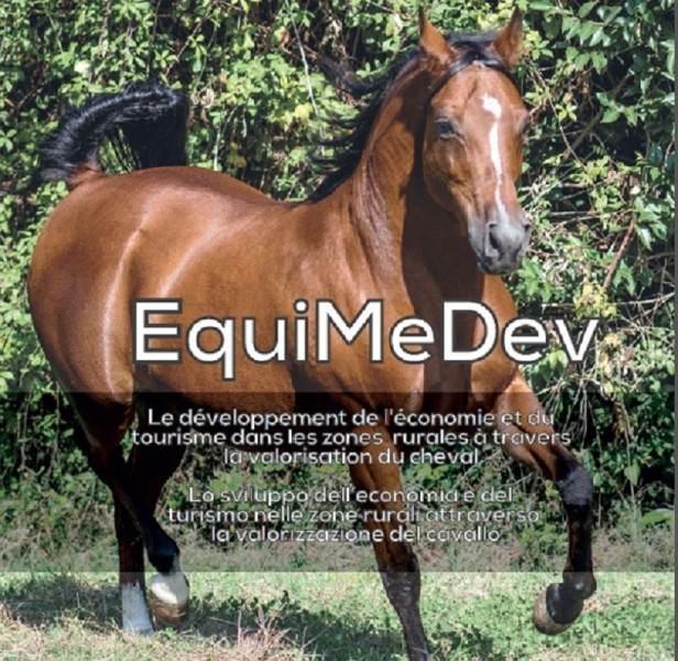 Cavallo 1 EquiMeDev