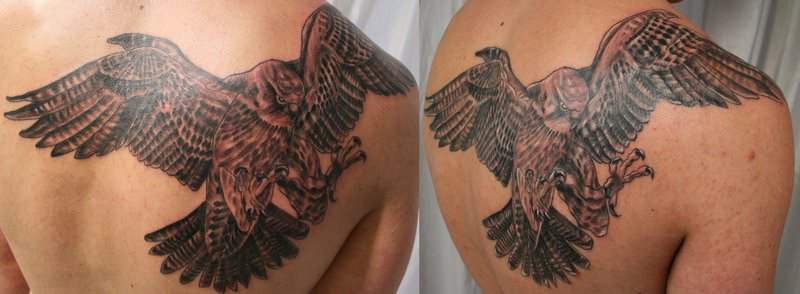 Falcon_Tattoo_by_2Face_Tattoo