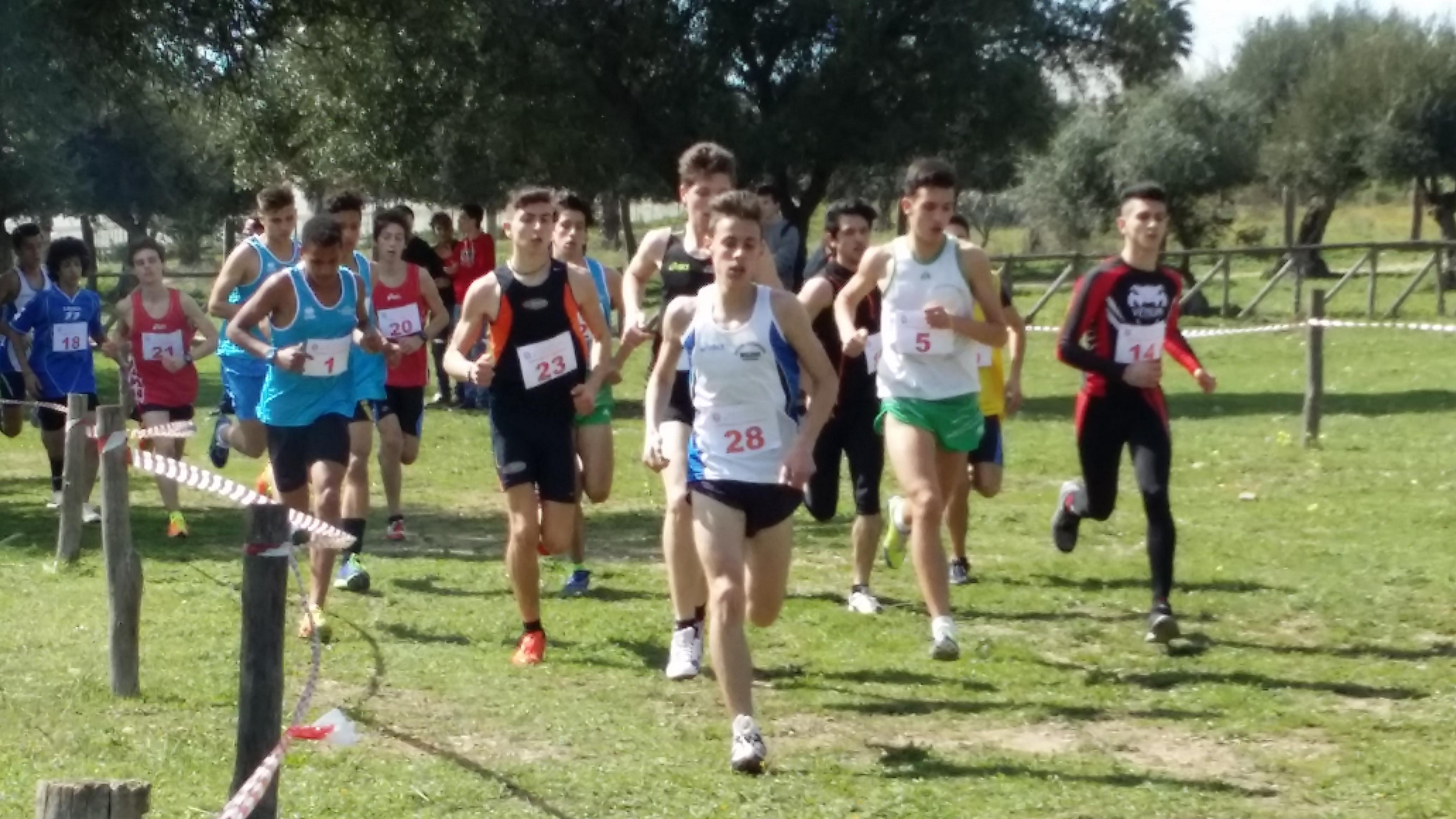 Campionati studenteschi di corsa campestre maschile2