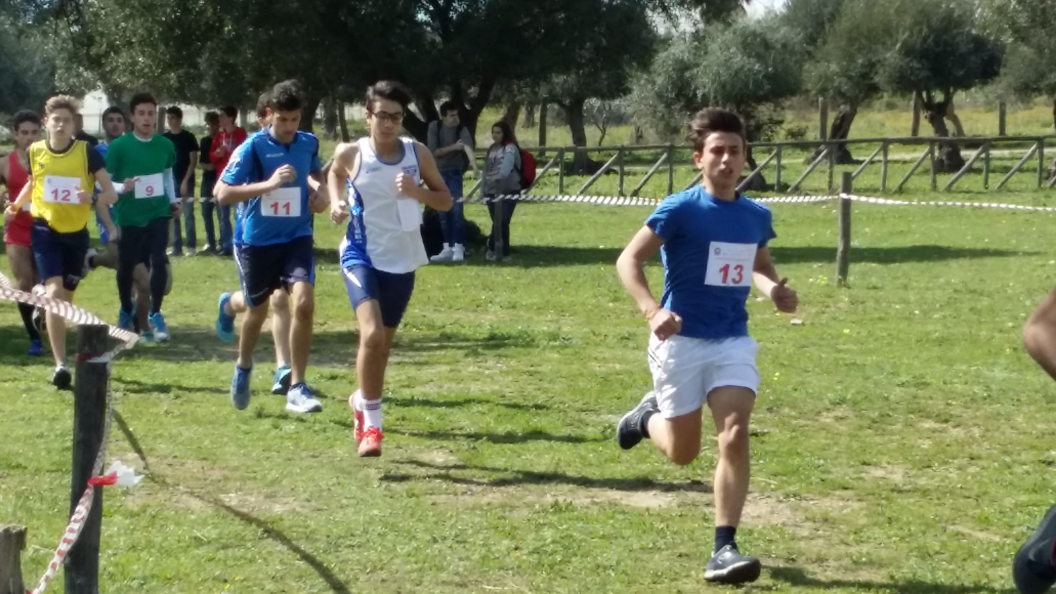 Campionati studenteschi di corsa campestre maschile4