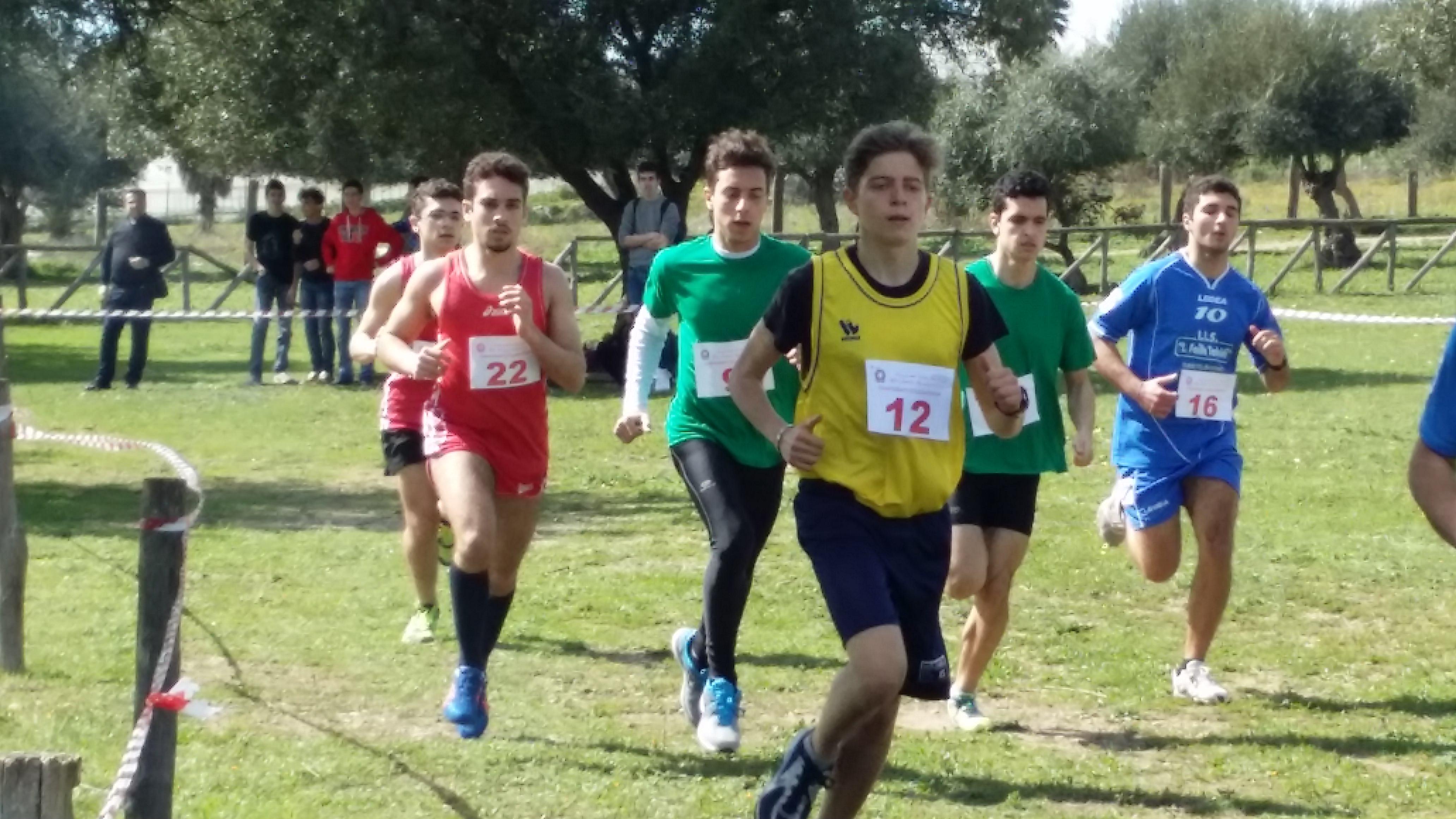 Campionati studenteschi di corsa campestre maschile5