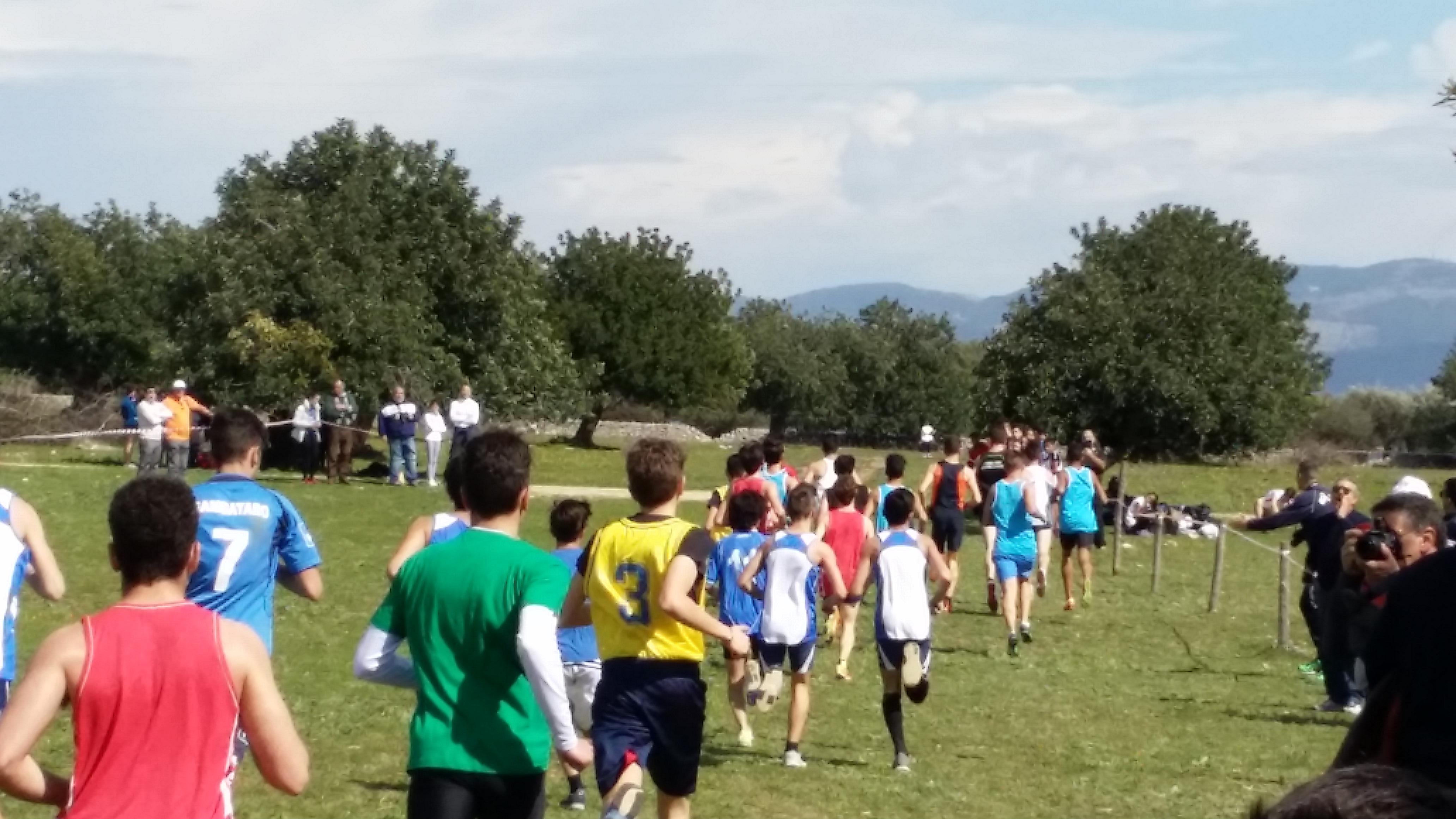 Campionati studenteschi di corsa campestre maschile6