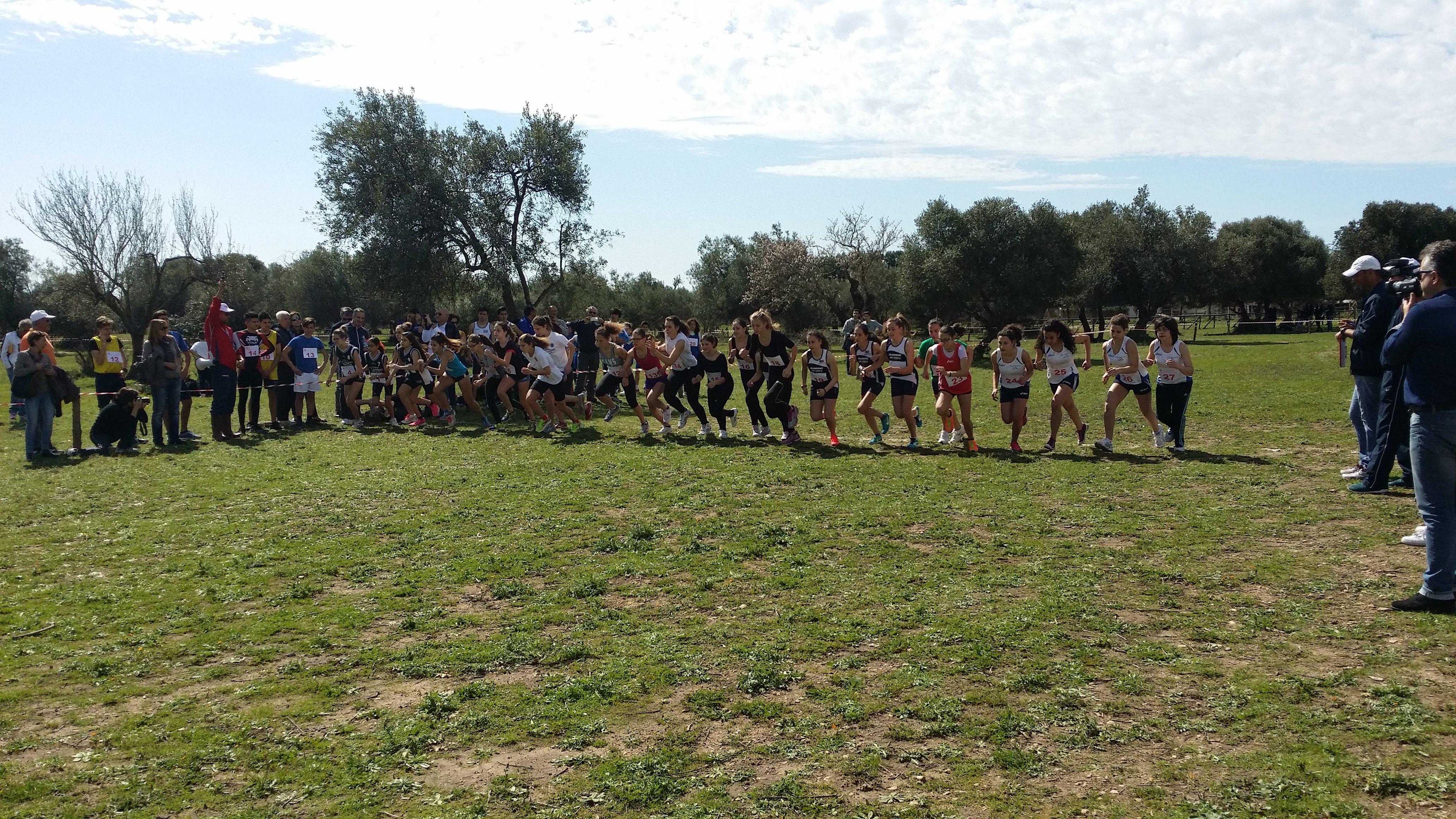 Campionati studenteschi di corsa campestre