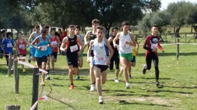 Campionati-studenteschi-di-corsa-campestre-maschile2