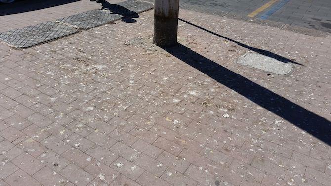 Sporcizia a piazza G. Verga