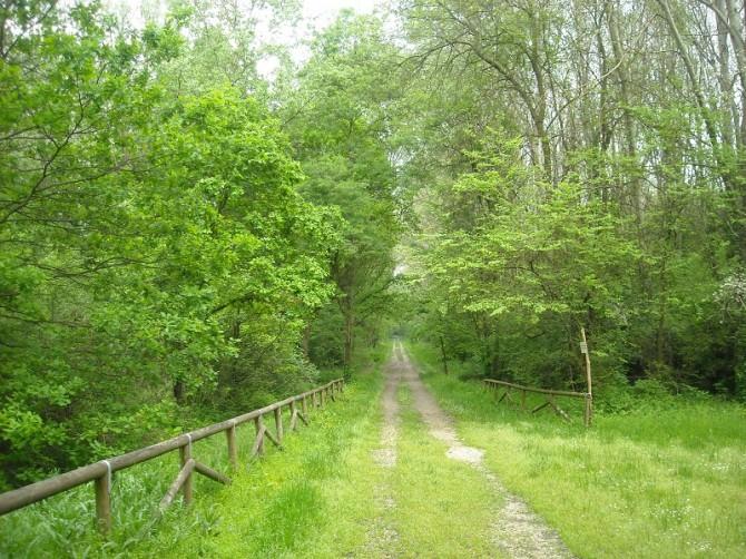 bosco modica floridia