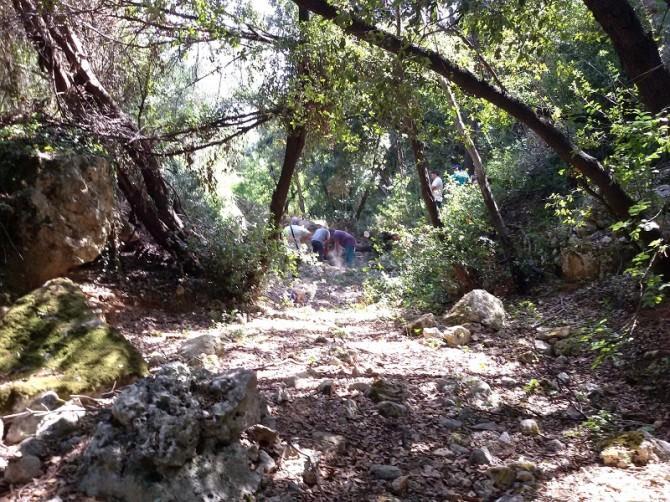 Riserva naturale integrale Grotta Monello