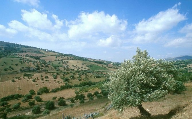 Agira Vallone