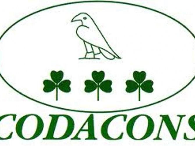 codacons-2
