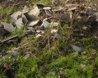 rifiuti via villa flaminia (1)