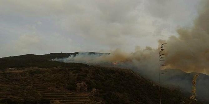 Pantelleria incendio