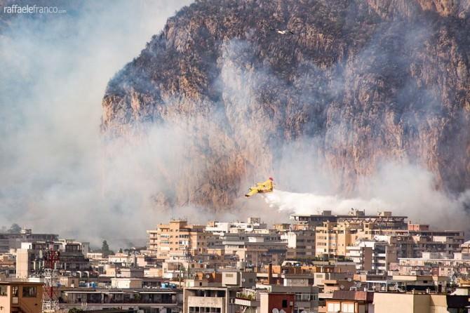 """Palermo, dopo gli incendi la conta dei danni, M5S: """"Crocetta chieda subito lo stato di calamità"""""""