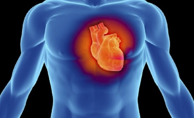 cardiomiopatia-ipertrofica-636x310