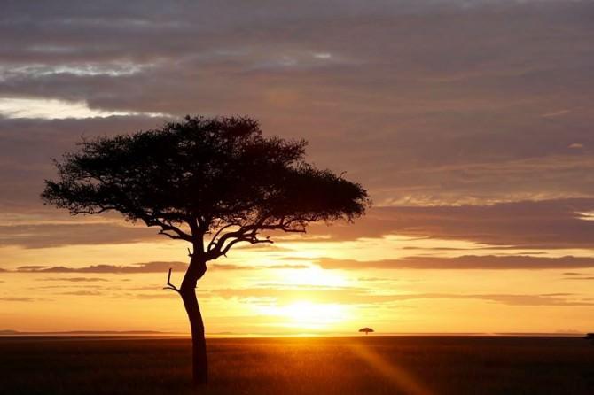"""Prende il via oggi al Cortile Platamone """"Out of Africa"""", musica e dibattiti alla scoperta di una cultura"""