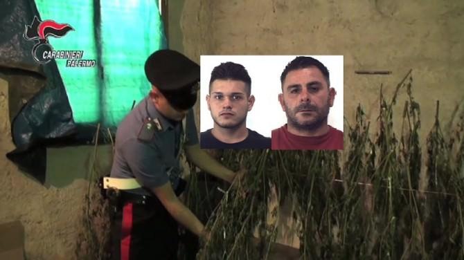 Garage trasformato in essiccatoio per la droga: tra gli arrestati anche un minorenne. VIDEO e FOTO