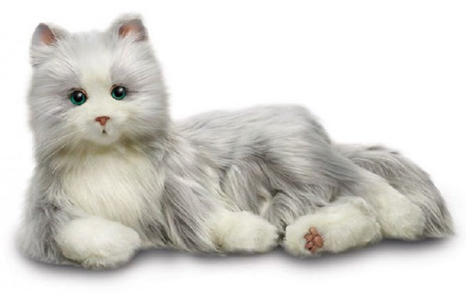 gatto-robot