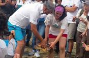 Catania: il WWF libera Serena, la tartaruga soccorsa in fin di vita