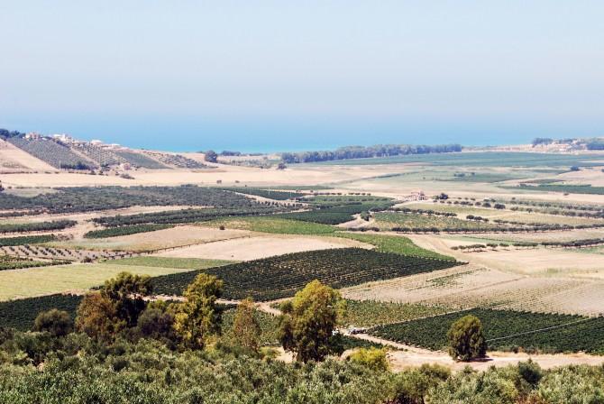 valle-del-belice