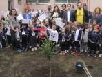 """Festa nazionale dell'albero: piantati all'istituto """"Padre Santo di Guardo"""" un ulivo, una eugenia e un mandarino"""
