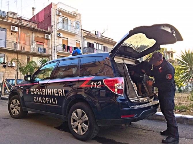 carabinieri cinofili a lentini