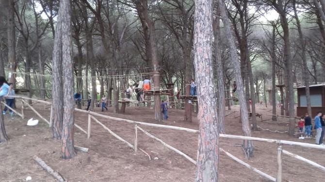 Parco Avventura del Boschetto della Playa, pericoloso per l'incolumità delle persone