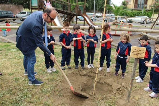 San gregorio donato un albero alla bambinopoli newsicilia for Donare un giardiniere
