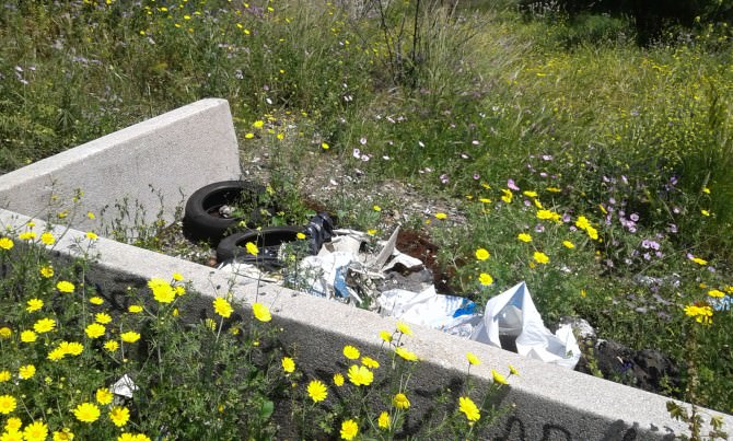 """Vandali padroni del parco degli Ulivi: """"Bisogna combattere questo degrado"""""""