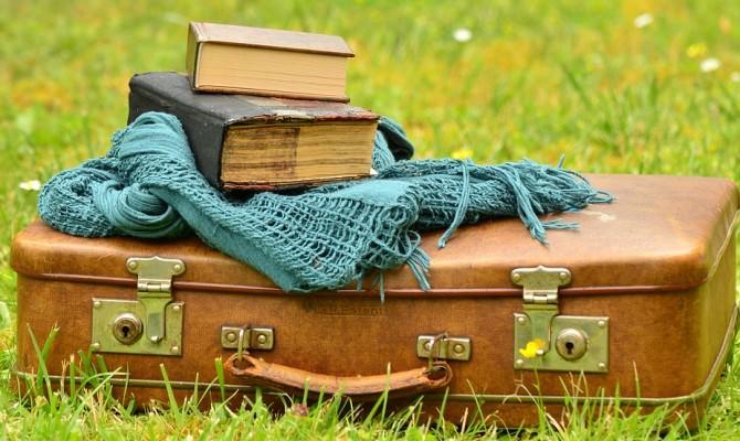 bagagli valigia libri viaggio