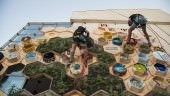 L'arte invade Marina di Ragusa: tripudio alla vita in un'esplosione di colori e disegni