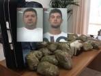 Droga 'ndrangheta