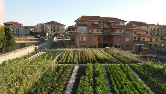 FOTO 2 Orto comunale di via Capaci a Ragusa oggi
