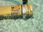 Tubo acqua tubatura