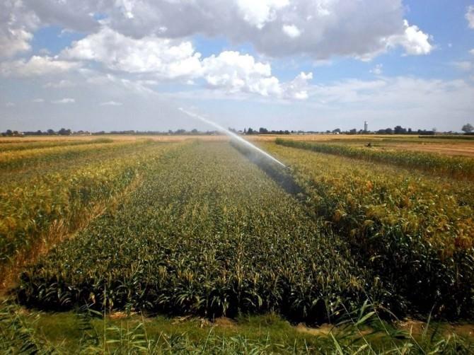 irrigazione-agricoltura-big-beta-2