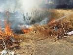 Incendio in viale Tirreno, sul posto solo 3 vigili del fuoco
