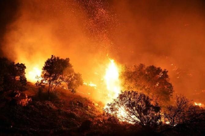 Vasto rogo in una pineta di Chiaramonte Gulfi, paese invaso dal fumo