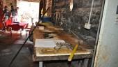 Stalle e macelli abusivi, cavalli maltrattati: sequestrati 3 locali in centro a Catania. LE FOTO