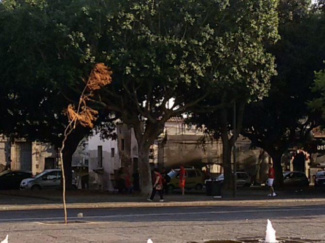 piazza Palestro 2